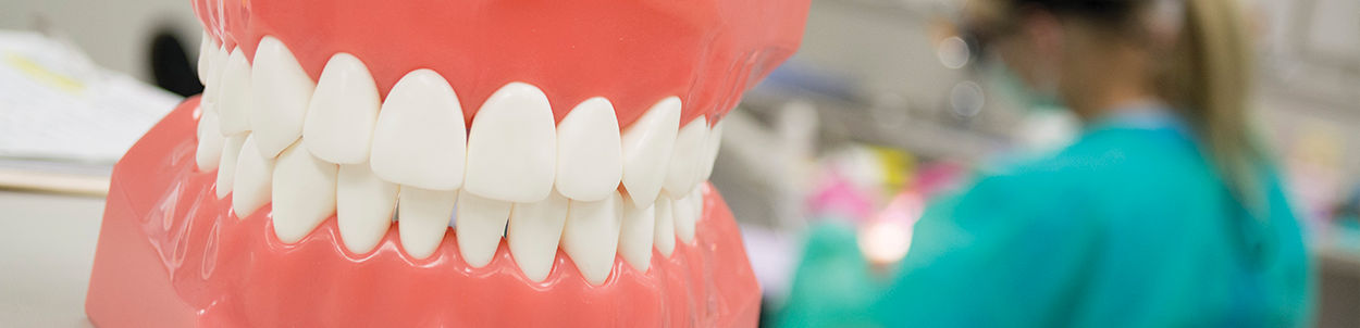 Dental Hygiene Header Banner