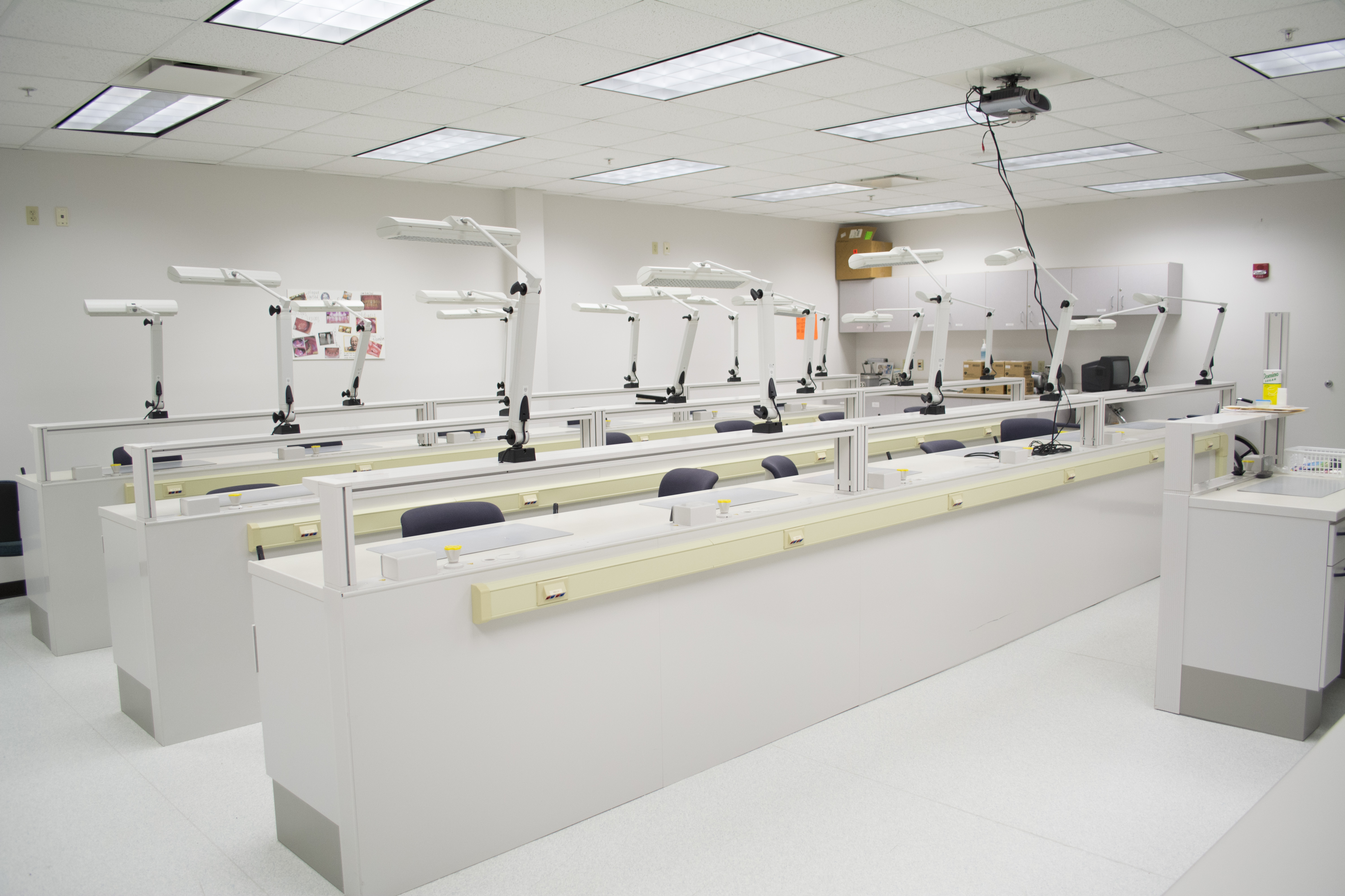 Dental Hygiene Lab